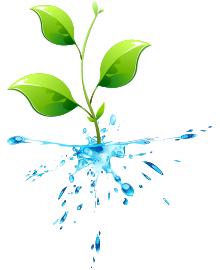 使い続けることでecoになる水 お水だけですっきり、エコ排水