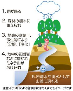 自然浄化のイメージ